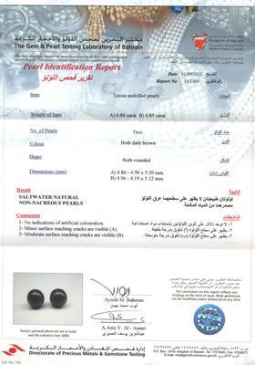 Salt Water Natural Dark Brown Pearl Earrings - Certificate