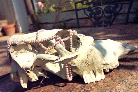 Skull Pearls