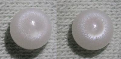 White Clam Pearl 1 ct.